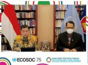 Pemerintah Sampaikan Pernyataan atas Review BPK pada VNR Indonesia dalam Forum HPLF di Markas Besar PBB